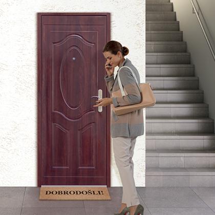 Vhodna kovinska vrata